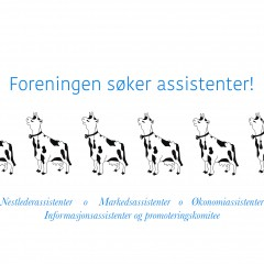 ASSISTENTER SØKES!