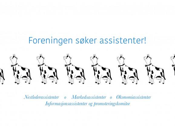 ASSISTENTERSØKES!